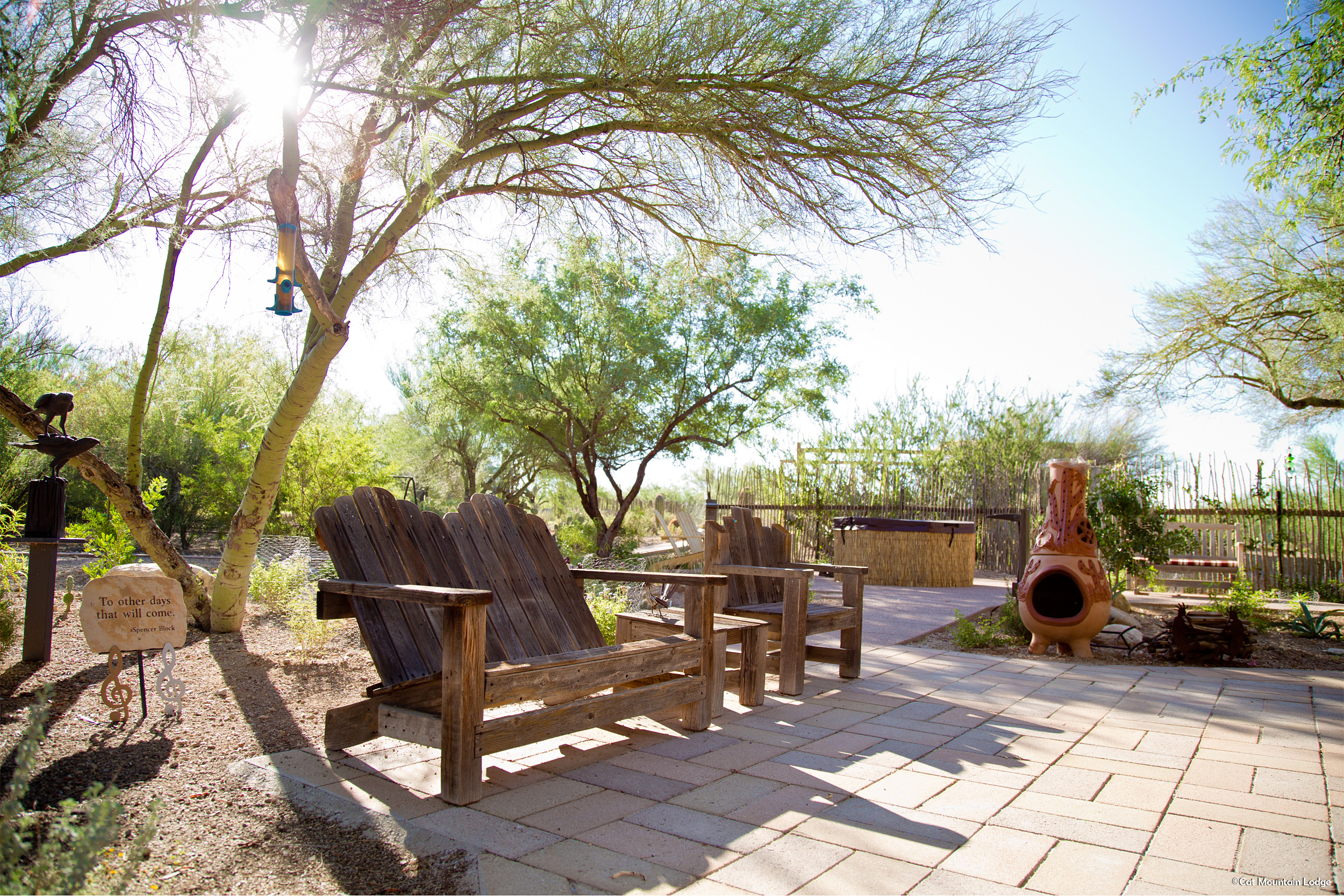 nearby attractions cat mountain lodge tucson arizona a bed